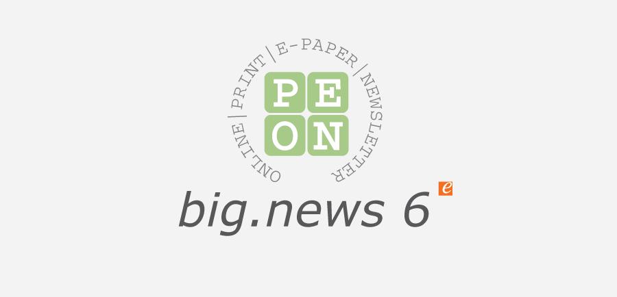 big.news 6 Logo grau 600